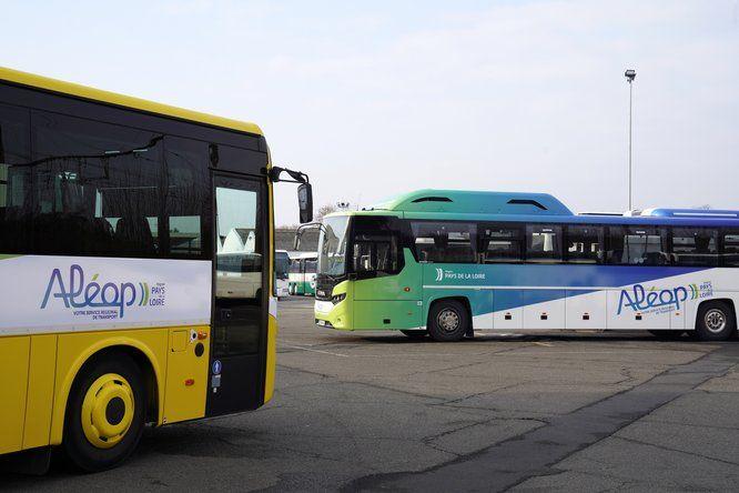 Un car scolaire et un car interurbain aux couleurs d'ALEOP, marque de transport régionale